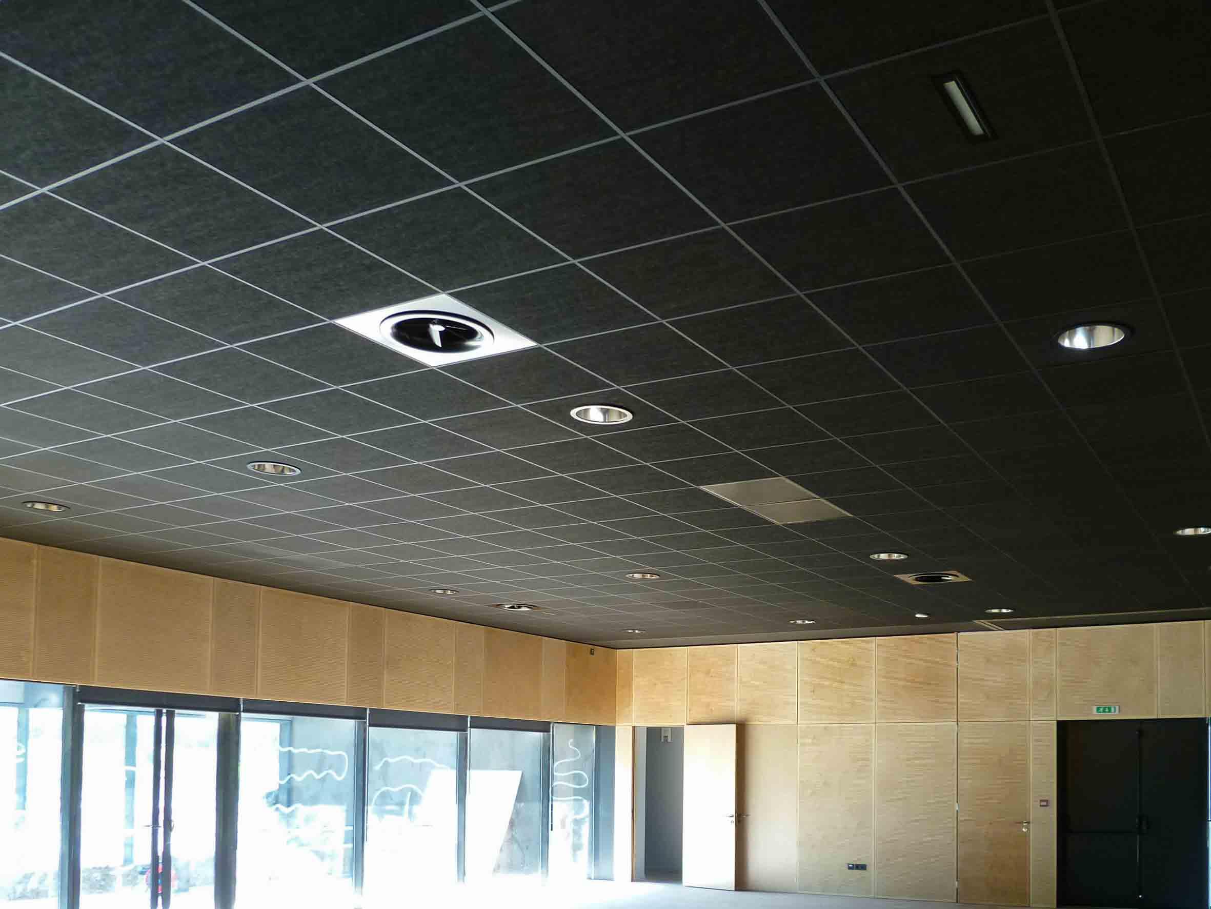 Plafond suspendu dalles noir - Langlois Sobreti